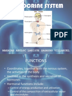 Endocrine System 1