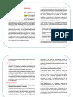 Fundamentación de la Dimensión d elos Aprendizajes..docx