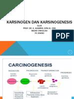 1.6.2.7 - Karsinogen Dan Karsinogenesis