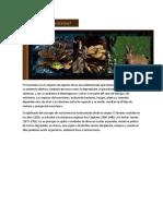 El Ecosistema Es El Conjunto de Especies de Un Área Determinada Que Interactúan Entre Ellas y Con Su Ambiente Abiótico