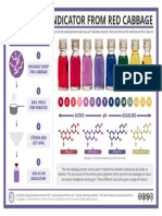 Making a Red Cabbage PH Indicator