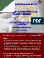 Aula Microbiota, Estreptococos e Estafilococos_2