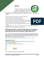 Panduan Singkat Bekerja Di Excel 2010