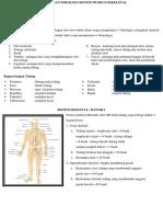Anatomi Dan Fisiologi Sistem Muskuloskeletal1