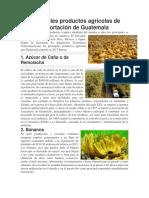 Principales Productos Agrícolas de Exportación de Guatemala