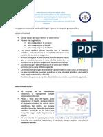 Guia Teórica de Desarrollo Embrionario Del Sistema Venoso