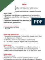 PELVIS, Student File