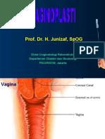 vaginoplasti2005b