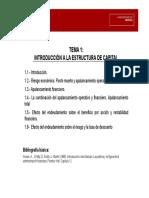 Tema01DFII