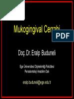 2. Mukogingival Cerrahi (2008-2009)