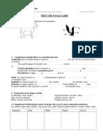 Test Stiinte Evaluare Sumativa Unitatea Plante Si Animale