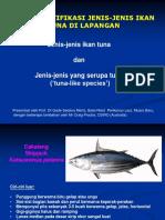 17. Mengidentifikasi Jenis-jenis Ikan Tuna Di Lapangan