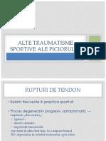 5. Alte Traumatisme Sportive Ale Piciorului