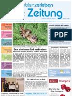 Koblenz-Erleben / KW KW 19 / 14.05.2010 / Die Zeitung als E-Paper