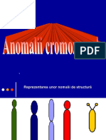 Anomalii de structura 2.ppt