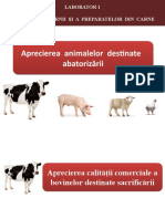 LP 1 - Aprecierea Animalelor Destinate Abatorizării