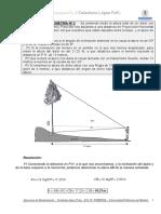 ejer-dendro-2 (1)