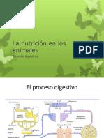3 la nutricion en los animales vertebrados.pdf