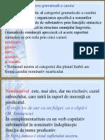 Gramatica cayul