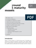 Risk Maturity Models 01 Antonucci 9780749477585 c01 1