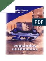 CCAA.pdf