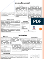 Mapas conceptuales Grupo N°  9 Mercantil Especial