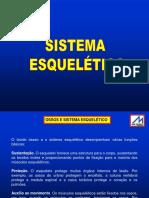 AULA-03 Ossos e Sistema Esquelético-Teórica