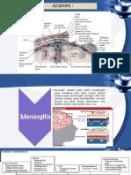 Meningitis Baterial