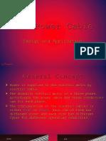 Part-04 05 ESP Cables
