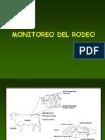 Condicion Corporal de Los Bovinos de Rodeo1