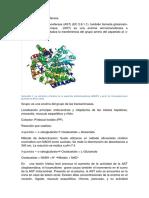 Aspartato-aminotransferasa.docx