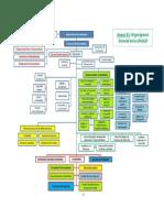 organigrama (1).pdf