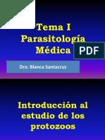 2,Introduccion Protozoos,Toxoplasma