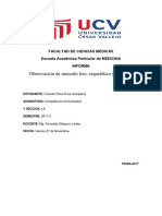 informe morfo musculos