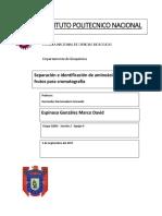 Separación e Identificación de Aminoácidos