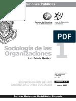 Sociologia de Las Organizaciones 1