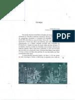 Coccia, Emanuele - Os Anjos.pdf