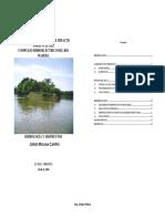 analisis_madera_2.pdf