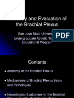 brachial-plexus-powerpoint.ppt
