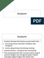 Anatomi Fisiologi Wch