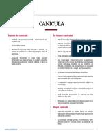 Fiipregatit_Ghid_Canicula