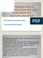 9Bonachera.pdf