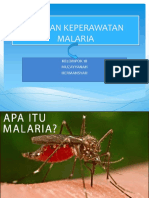 Ppt Askep Malaria