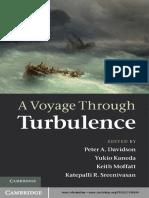A_Voyage_Through_Turbulence.pdf