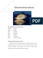 Klasifikasi Ikan Nila Maya THP'15
