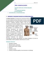 sist_endocrino1_generalid.pdf