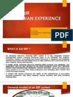 ERP Audit Final Presentation