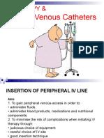 IV Catheter