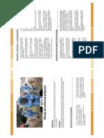 ECF 9 Sustancias Peligrosas CODELCO