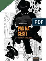 Pavel Vilikovsky Pas Na Cesti